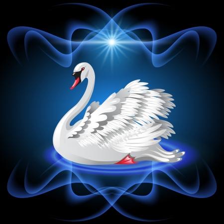 majestic: Elegant white swan on blue background  and star Illustration