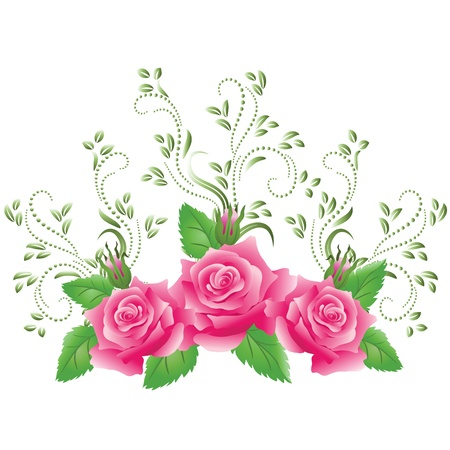 Pink roses with green floral ornament Vector
