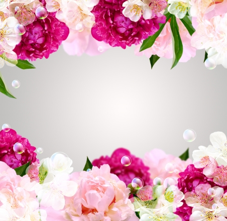 Card with peony, white flowers and bubbles Stock Photo - 14123031