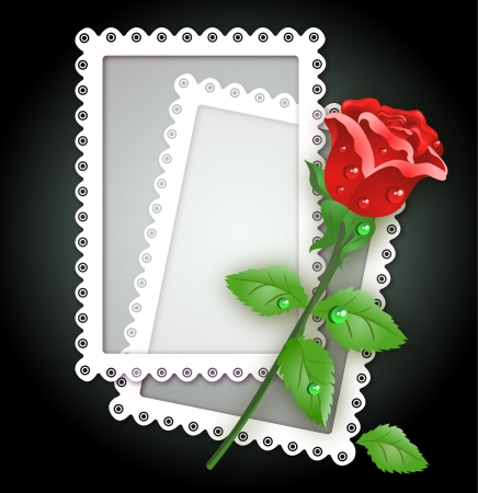 Greeting card with white frame and red rose Vector