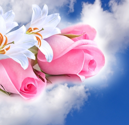 Pink roses and lilies in the clouds photo