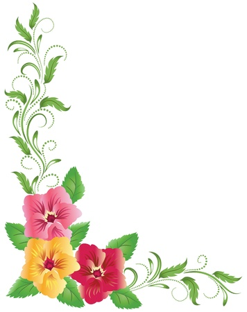 Pink and yellow pansies with green floral ornament Illustration