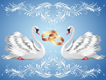 birds lake: Card with wedding rings and two swans in ornament frame