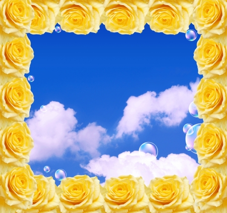 rose frame: Yellow roses frame and blue sky