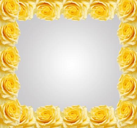 Gelbe Rosen Rahmen