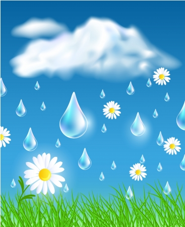Rain in the meadow Vector