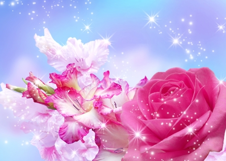 Rose and gladiolus blossom and shine stars photo