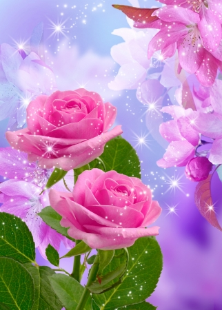 Cherry and roses blossom and shine stars Stock Photo - 14874651