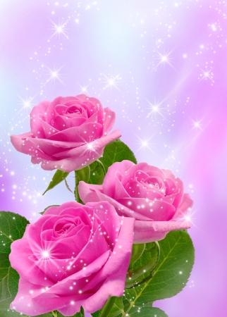 Roses and shine stars Stock Photo - 14874649