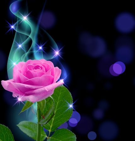 Glowing background with rose and stars photo