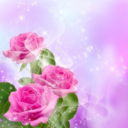 rose bouquet: Roses and shine stars