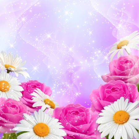 Roses, daisy and shine stars Stock Photo - 15153975