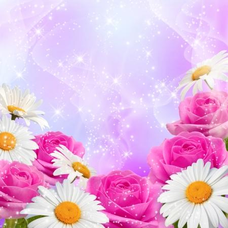Roses, daisy and shine stars Stock Photo - 15153975