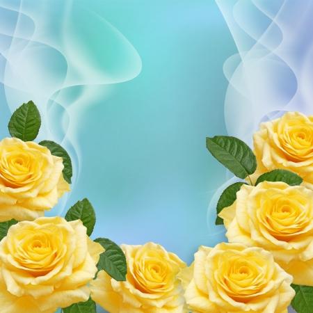 黄色のバラと透明な波 写真素材