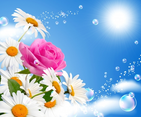 バラと空に対してヒナギク