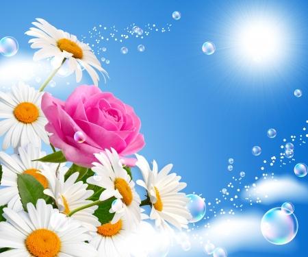 Rose und Gänseblümchen gegen den Himmel Lizenzfreie Bilder
