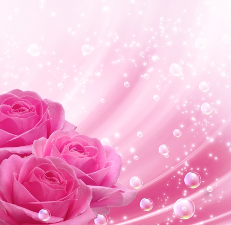 roses background: Pink roses and bubbles