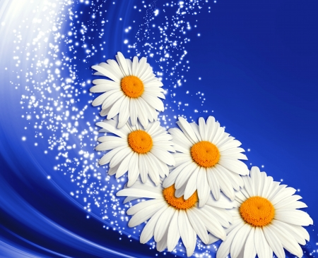 Abstract glowing background with  daisy and stars photo
