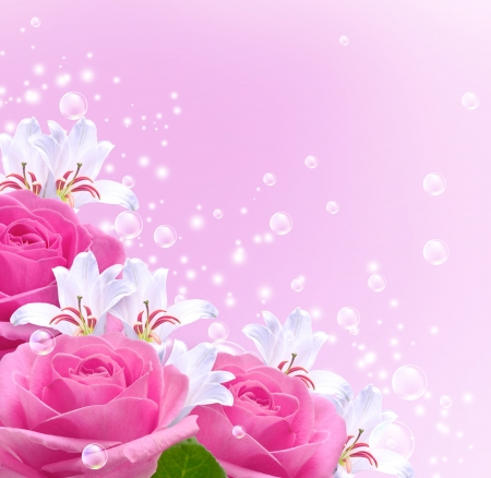 ピンクのバラ、ユリ、泡 写真素材