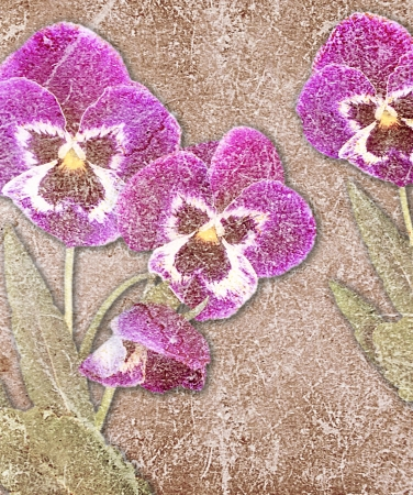 Old grunge background with violet pansy Stock Photo - 18031242