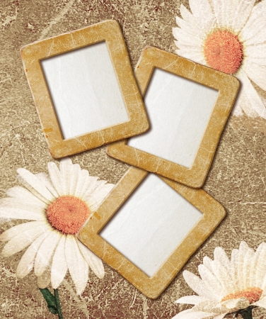 Old grunge background with daisies and photo frame photo