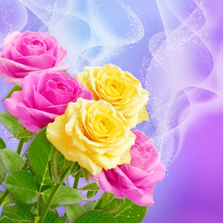 yellow roses: Pink and yellow roses and stars