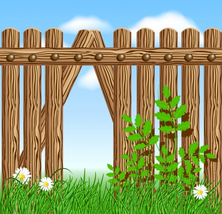 grass border: Wooden fence on green grass with daisy against the sky