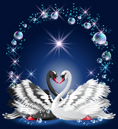 Elegant white and black swan on blue background  and bubbles frame Vector