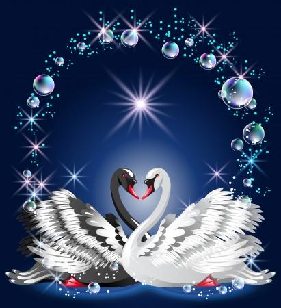 Elegante witte en zwarte zwaan op blauwe achtergrond en bellen kader