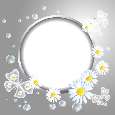 Marco redondo, mariposas transparentes y la margarita