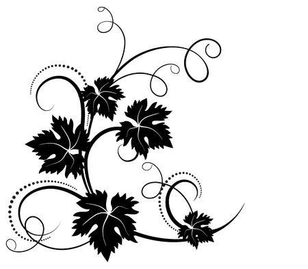vine and leaves of vine: Grape decorative ornament