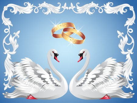 gentleness: Wedding rings and two swans in retro frame