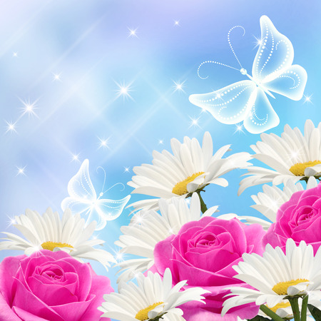 Daisy, pink roses and transparent butterflies photo