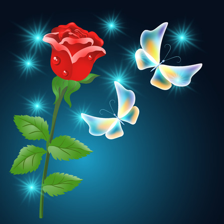 dewdrops: Red rose and transparent fabulous butterflies on the blue background