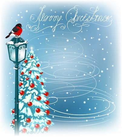 fur trees: Christmas vintage lantern with bullfinch  on the evening landscape background and fur trees