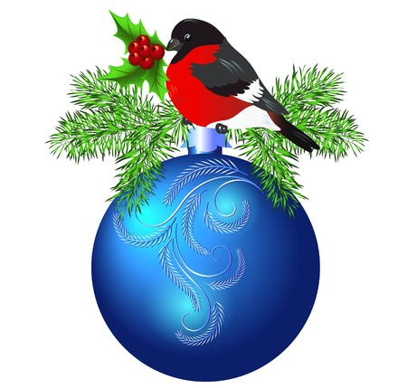 bullfinch: Christmas blue ball with bullfinch and spruce isolated on white background