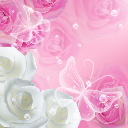 pink bubbles: White and pink roses with  bubbles and dreamlike transparent butterflies Stock Photo