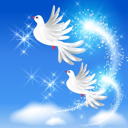 Flying two white doves in the sky and sparkling salute Vector