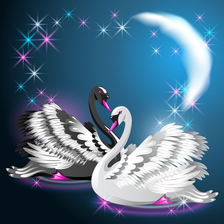faithfulness: Black and white swans swim at night under the moon and glowing stars