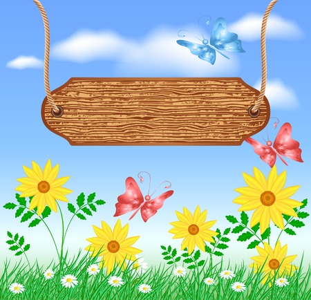 wooden signboard: Wooden signboard on the meadow with daisies and butterflies