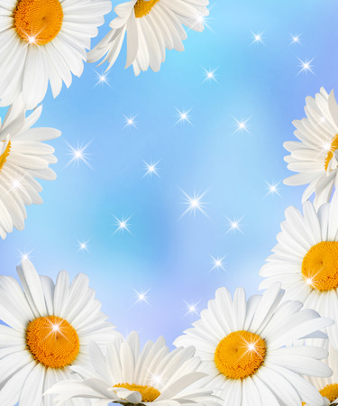 pretty s shiny: Daisies and glowing stars on blue  background