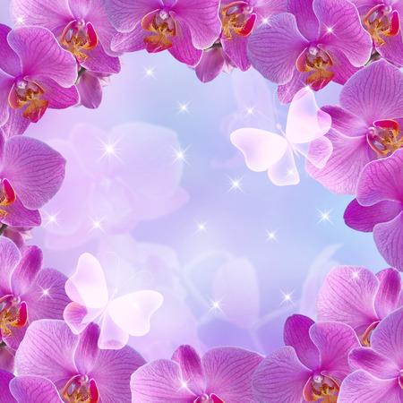 marco cumpleaños: orquídeas rosas y mariposas sobre fondo de las estrellas que brilla intensamente