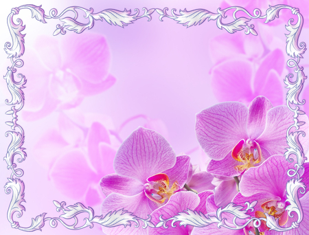 decorate: Pink orchids with vintage  ornament on blur background Stock Photo