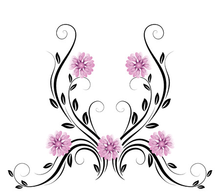 Dekorative Blumenverzierung mit Daisy auf weißem Hintergrund