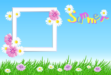 Summer landscape with frame in the sky, meadow flowers and green grass