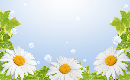 Floral border of daisies and bubbles against the sky