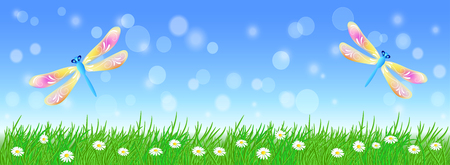 Summer landscape with fairy dragonflies in the sky, meadow flowers and green grass