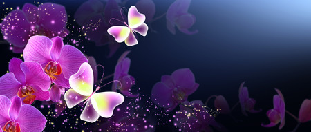 Magic butterfly with mysterious pink orchids and and sparkle stars