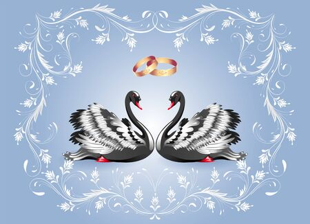 Decorative card with two black swans and white vintage luxurious ornament and golden rings for invitations or congratulations with wedding or engagement