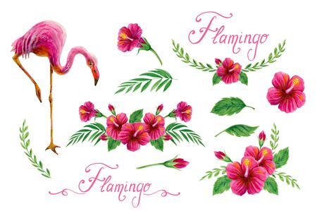 Set element. Hand drawn watercolor paintings with pink flamingo, foliage and Chinese Hibiscus rose flowers isolated on white background. Floral summer ornament. Design collection.